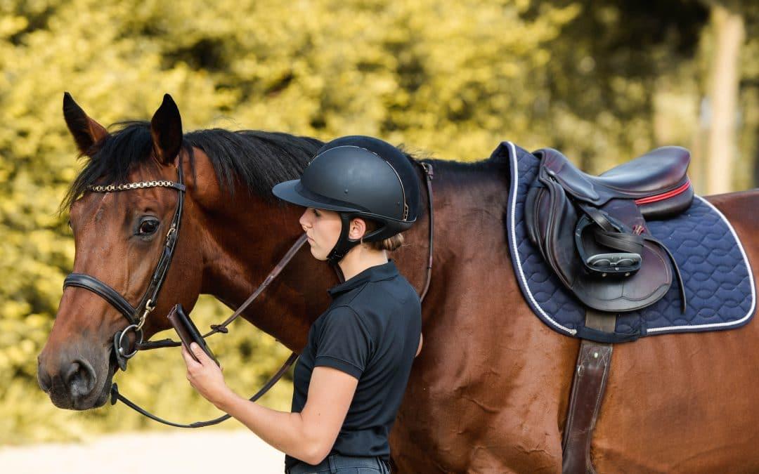 Hoe een online managementsysteem jouw paardenbedrijf kan helpen